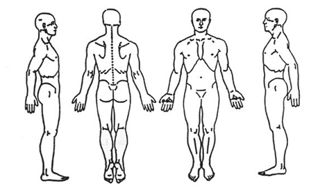 bliss thai massage customer medical history form : medical body diagram - findchart.co